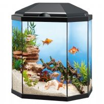 25L Hexagonal Style Glass Aquarium with LED Lights & Filter - Black